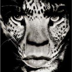 LionEagle